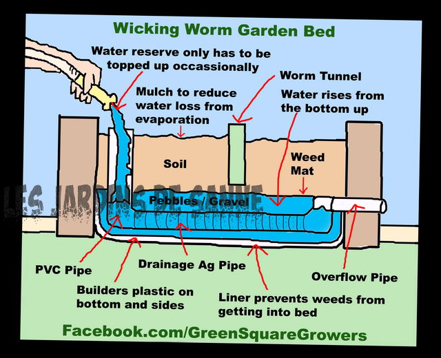 Mikä on wicking Bed - DIY Wicking Bed Ideat Puutarhanhoitajille