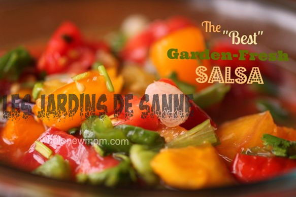 Homemade Garden Salsa: luominen hauskaa Salsa Garden for Kids